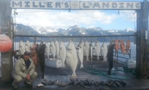 Fishing Pic for 2016 Alaska trip